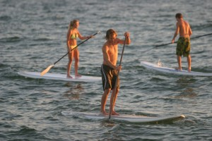 Stand Up Paddleboard Hore Rose Bay